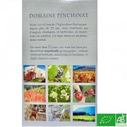 PROVENCE Vin de Pays du Var Domaine Pinchinat Vénus rosé 2019 BIB 5L