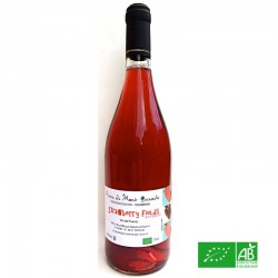 LOIRE Vin de France Gamay Strawberry fields Stéphane Rocher 2016